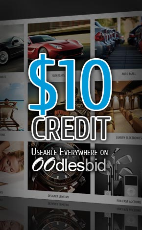 $10 Credit Free Auction